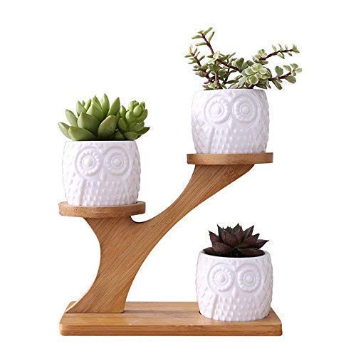 LINGLAN 1 set gufo in ceramica vasi da giardino moderno decorativo cameretta succulente...