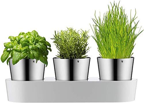WMF 0641306040 - Set da giardino per erbe aromatiche WMF, 3 pezzi, Vaso per erbe con...