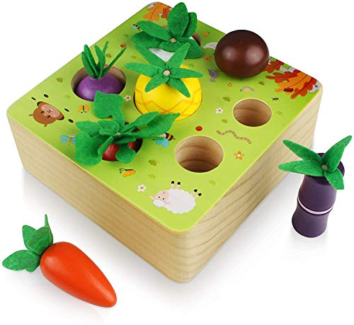 Jiahuade Giochi Montessori Bambini 1 Anno,Carote Giocattolo,Giocattoli Montessori...