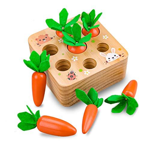 Evira 1 2 3 Anni Giocattoli per Bambini, Giocattoli per Bambini Montessori 12 18 24 Mesi...