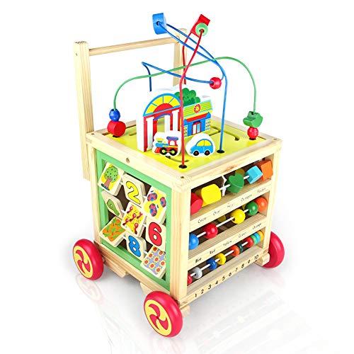 Nuheby Carrello Primi Passi Giochi in Legno per Bambini Giocattolo Educativi Multifunzione...