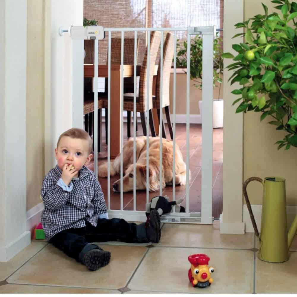 cancelletti bambini per cani